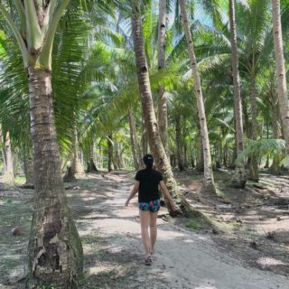 May we never be too busy to stop and breathe under a coconut tree. 🌴